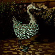 animal decoratif lumineux - canard